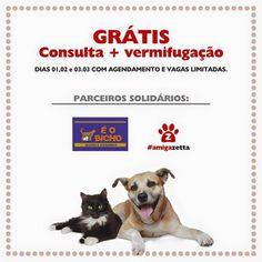 BONDE DA BARDOT: PE: Agendamento de consultas e vermifugação grátis para animais carentes em Recife, no Espinheiro (01, 02 e 03/03)