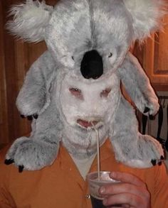 This man in this koala mask. - Koala Funny - This man in this koala mask. Stupid Memes, Stupid Funny, Hilarious, Funny Laugh, It's Funny, Reaction Pictures, Funny Pictures, Dank Pictures, Fail Blog