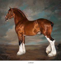 Horse/Equine art glicee prints by Jaime Corum. Art Painting, Equestrian Art, Fine Art, Animal Art, Art, Artwork, Horse Drawings, Fantasy Art, Animal Paintings