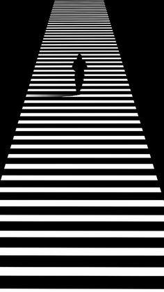 Shadow Photography, Photography Photos, Street Photography, Black Aesthetic Wallpaper, Aesthetic Wallpapers, Op Art, Zebra Art, Damier, Black N White Images
