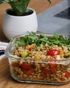Featuring Protein-Packed Roasted Vegetable Salad, Three Bean Salad, Farro Lentil Salad and Pesto Quinoa With White Beans Lunch Recipes, Vegetarian Recipes, Cooking Recipes, Healthy Recipes, Clean Eating, Healthy Eating, Healthy Lunches, Healthy Salads, Healthy Food