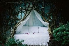 Tree Canopy Beds | Tree Branch Canopy Beds - Bing Images | In the Land of My Dreams...
