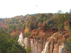 """Providence Canyon Georgia. Also known as the """"Little Grand Canyon"""" just a short drive from Lumpkin, Ga. Camped there with friends when we were in Ft. Benning, Ga."""