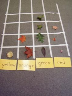 {leaf graph} all sorts of leaf lessons @ the site. (Use this for Garden, Halloween week) Forest School Activities, Classroom Activities, Learning Activities, Teaching Ideas, Teaching Kindergarten, Shape Activities, Reggio Classroom, Teaching Art, Physical Activities