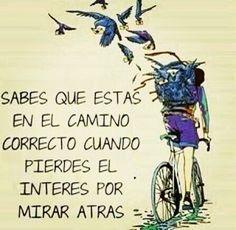 #acida_realidad #realidad #verdades #frases #pensamientos #pensar #vids #vivir #cambiar #camino #motivacion #motivo #go #goahead #life #amor #amar #bicicletas #bici #seguir #esperanza #aves #CAJADEVERDADES #bird #cajadeverdades #avanza #avanzar