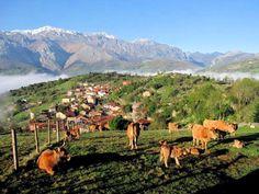 Una bellísima serie de imágenes de los paisajes montañosos de Asturias.