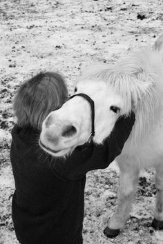 Let a horse whisper in your ear and breath on your heart ... you will never regret it.