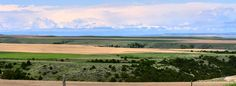 Great Montana Ranch for Sale   The Fritz Ranch is located in Yellowstone County Montana.   The Ranch is located on top of, and along the south hills of the Yellowstone River overlooking the City of Billings.