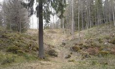 Ruins of Rapola hill fort