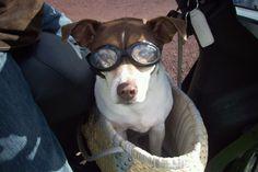 Sam mee op de scooter met bril voor de wind in de ogen..