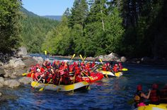 Party on the Water! whitewater rafting