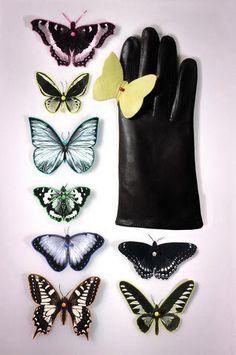 Maison Fabre collection Papillon vintage Millau