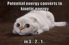 Potential energy converts to kinetic energy in 3... 2... 1...
