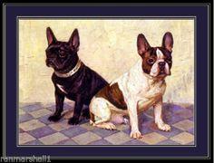 English Picture Print French Bulldog Dog Art