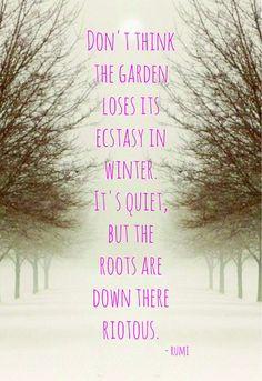 Don't think the garden losese it's ectasy in winter It's quiet. But the roots are down there riotous. -Rumi- ¤ Poet Ponderings ¤ poetry, quotes & haiku - riotus roots in winter - rumi Rumi Quotes, Life Quotes, Inspirational Quotes, Motivational Sayings, Nature Quotes, 2015 Quotes, Pain Quotes, Attitude Quotes, Quotable Quotes