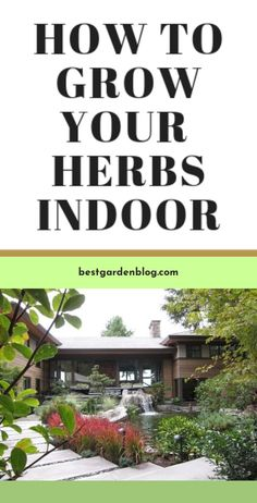Go to the webpage to see more on Check This OUT: 10 Gardening Ideas for Your Patio  Follow the link to learn more. Garden Design, Garden Ideas, Herbs, Gardening, Patio, Link, Check, Lawn And Garden, Herb