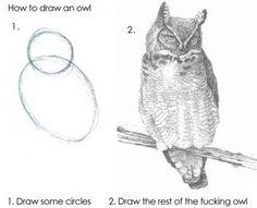 Hvordan man tegner en ugle