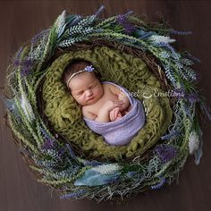 Lovely little Molly May ❤️ #sydneynewbornphotographer #Hillsdistrictnewbornphotograper #sydneyphotographer #newbornphotos #newbornphotography #newbornlove #sweetemotionsphotography #sydneynewbornphotography #hillsdistrictnewbornphotography