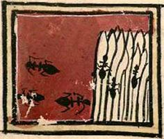 Bestiario Harley. C. 1230-1240. Inglaterra (British Library, Harley MS 4751)