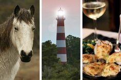 Here's how to spend a perfect weekend in Chincoteague! Discover where to stay, things to do, and where to dine on the beautiful island of Chincoteague, Virginia Chincoteague Island, Chincoteague Virginia, Chicken Nachos, Jerk Chicken, Lemon Roasted Potatoes, Pumpkin Spice Bread, Seafood Gumbo, Shrimp Gumbo, Cinnamon Pecans
