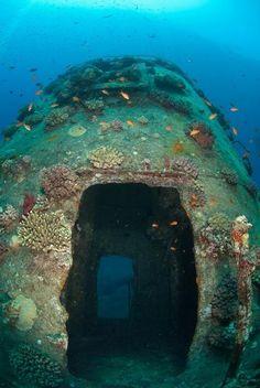 Red Sea Shipwreck Gianiss D  Doorways through the funnel of the Red Sea shipwreck Giannis D ShaÕab Abu-Nuhas Red Sea Egypt.
