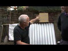 Our AUSTRALIAN NATIVE TRIGONA STINGLESS BEEHIVE Introduction. #1 - YouTube