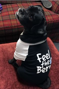 This Bernie Sanders doggie raglan is just beggin' to be worn! Printed with a Feel the Bern logo on the back. USA-Made. Ships Next Day! #FeeltheBern