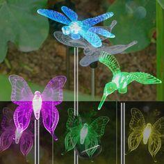 Solar Fairy Lights, Landscape Lighting, Solar Power, Hummingbird, Color Change, Lawn, House Ideas, Butterfly, Halloween