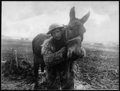 A Soldier and His Mule | France c 1918