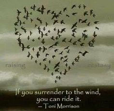 Surrender to the wind....fly high