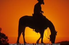 Sunset silhouette of an old western icon, the cowboy in Arizona