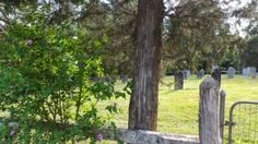 A recent visit to the Weidner Robinson Cemetery was an opportunity to see the burial spot of Henrich and Catharina Weidner, as well as their replaced tombstones. Catawba County, Family History, Cemetery, Genealogy, North Carolina, Memorial Park, Family Tree Chart