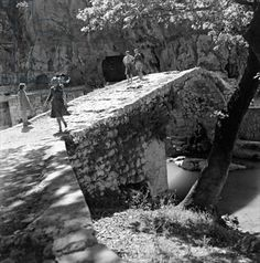 Livadeia, c.1950 (b/w photo), Papaioannou, Voula (1898-1989) / Benaki Museum, Athens, Greece / The Bridgeman Art Library Old Photos, Vintage Photos, Benaki Museum, Greece Photography, Greek History, Historical Pictures, Back In The Day, Past, Black And White