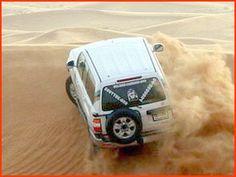 Day tours (desert safari) in Doha, Qatar.