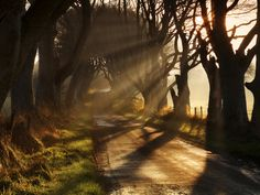 Early Morning Light by Gary McParland