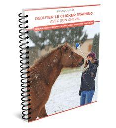 Martin Saddlery Pink Lime Baril Rênes avec tressé NOEUDS Horse Tack Roping