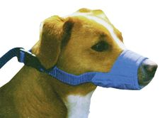 Four Flags Over Aspen Treatment Room Muzzle - XX-Large * See this awesome image  : Dog muzzle