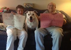 "Diamond's grandparents say ""Nobody in My Family is Inherently Dangerous! Not Even Our Granddog!"" B-More Dog's message to the State of MD, 475+ STRONG! #pitbull #pitbulls"