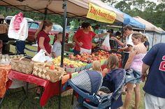 3rd Saturday is a market day @ Nocatee Farmers Market at Nocatee Town Center Field in Ponte Vedra Beach, Florida 10am - 2pm http://www.farmersmarketonline.com/fm/NocateeFarmersMarket.html