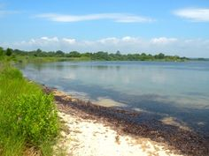 The Ninigret National Wildlife Refuge is a beautiful, quiet place that's home to many birds and animals.