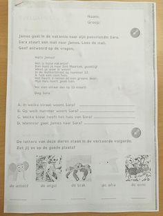 Voor de Cito week 4 pagina's van het evaluatieboekje. Leerlijnen lezen, schrijven en luisteren.