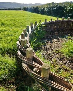 Salix (wattle) borders | by KarlGercens.com GARDEN LECTURES