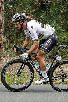 Peter Sagan Stage 3 Tour Down Under 2017 Photo credit mariostiehl