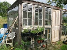 A greenhouse made from old wooden windows and door.