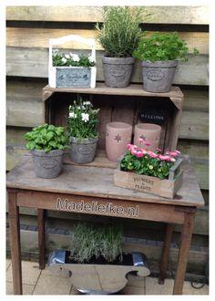 Oud tafeltje, veilingkist, potjes, kruiden en bloemen maken het gezellig op ons terras.