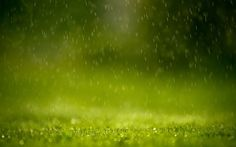 1 Hour of Gentle Rain - Meditation (without music) (+playlist)