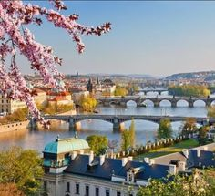 Spring in Prague, Czechia
