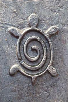 Tortue spirale … Plus