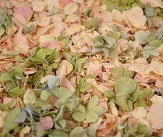 Preserved Hydrangea & Rose Petals in Pink and Green | 5 cups - perfect for decorating (spring/summer event) or for tossing in place of confetti