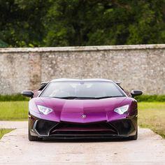 Purple Lamborghini   (📷 by: Sam Mayne)   LMX
